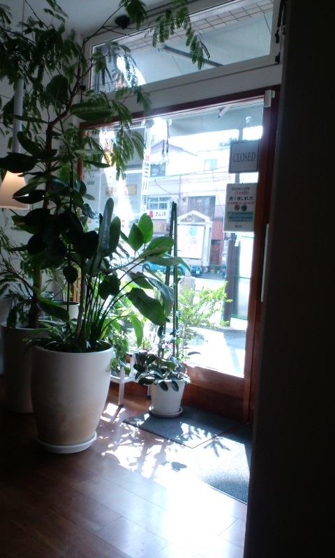 hane‐cafe 店内