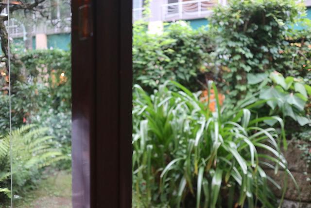 蔦珈琲店 店内からの眺め