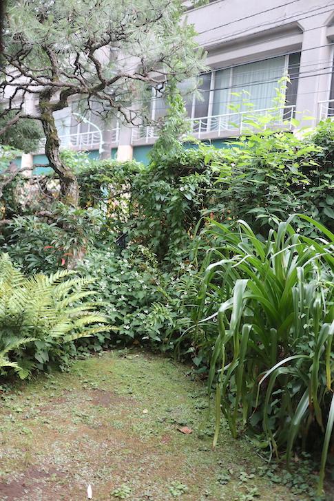 蔦珈琲店 庭園